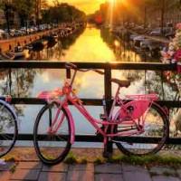 Dettaglio_Amsterdam