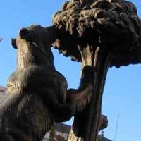 Madrid_Dettaglio Statua dell Orso Plaza del Sol