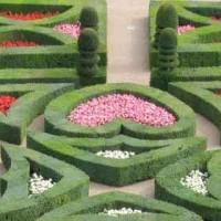 Dettaglio_Villandry Giardini dell'Amore